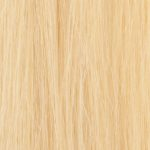 #1001 Light Blonde