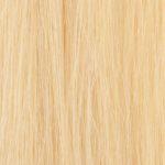 #1001 Light Blonde